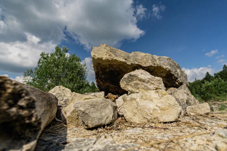 Im Erlebnissteinbruch Hainholz bei Königslutter können Sie selber nach Fosilien suchen.