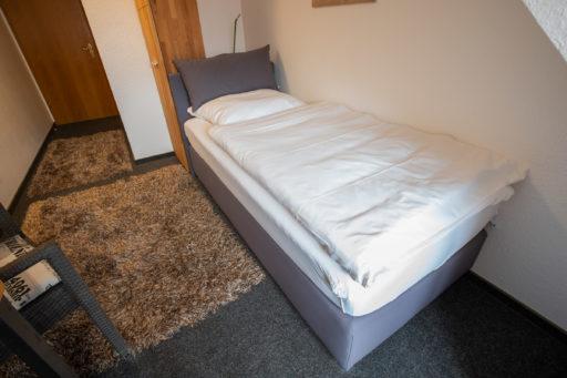hotel-altes-brauhaus-koenigslutter-04